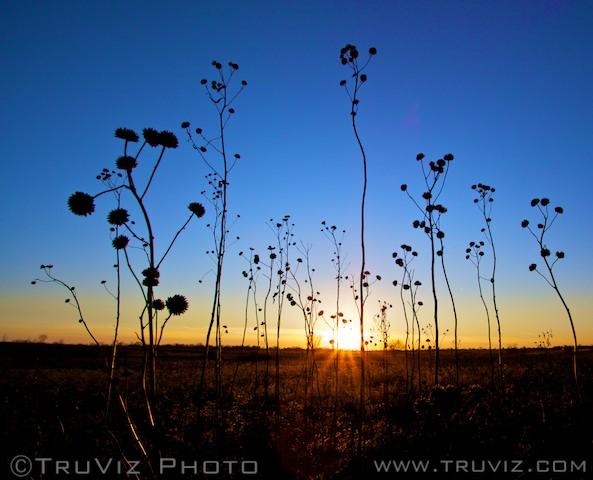 IMG_0366-2011-12-29-at-16-11-44