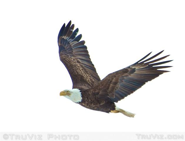 img_6160-2012-01-21-at-12-22-49
